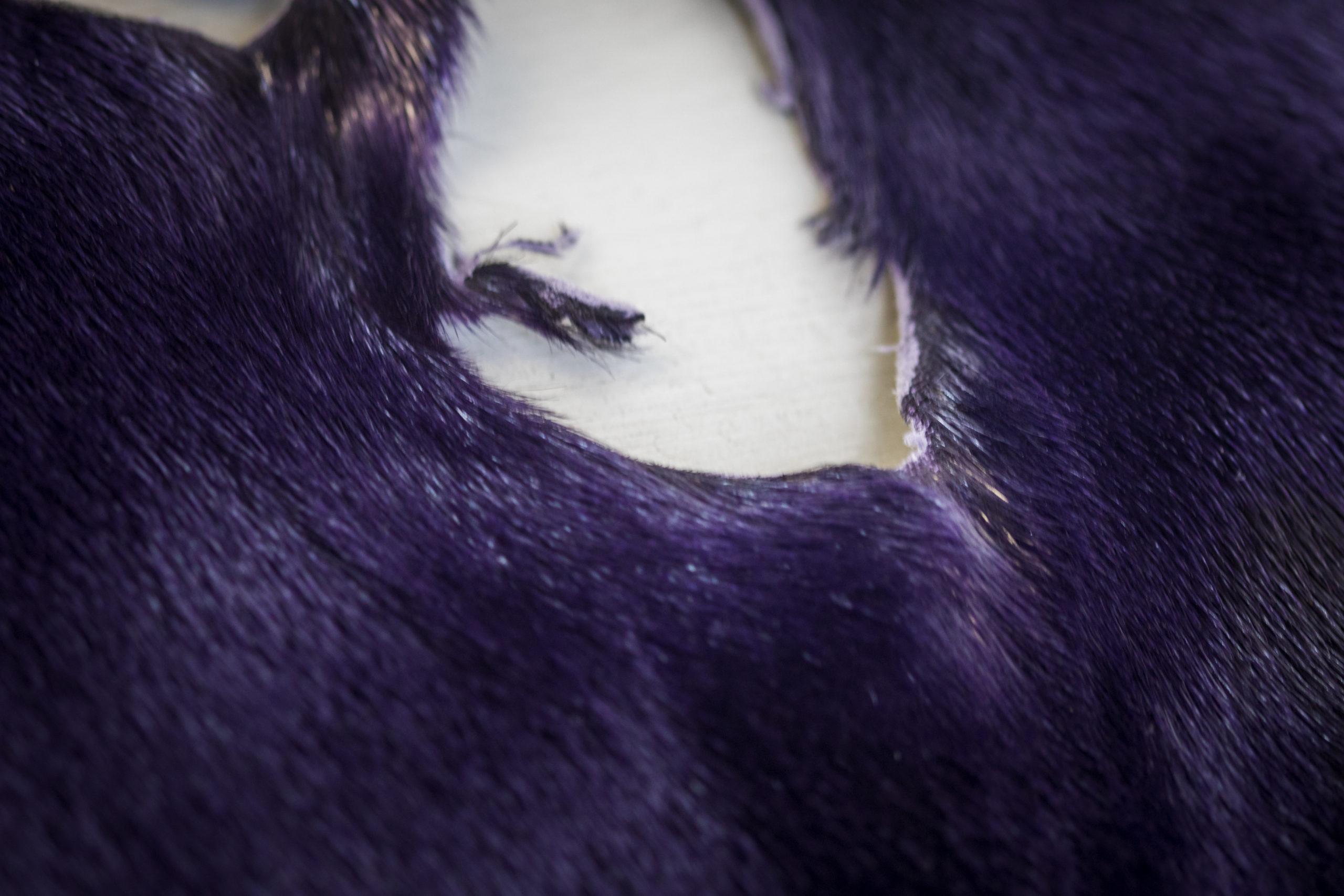 Purplehole