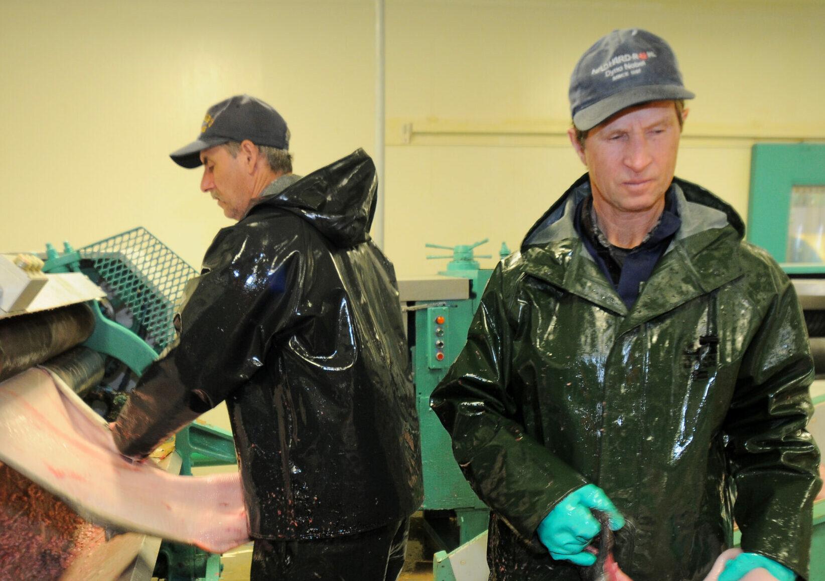 Seal Oil Processing Facility Carino (22)