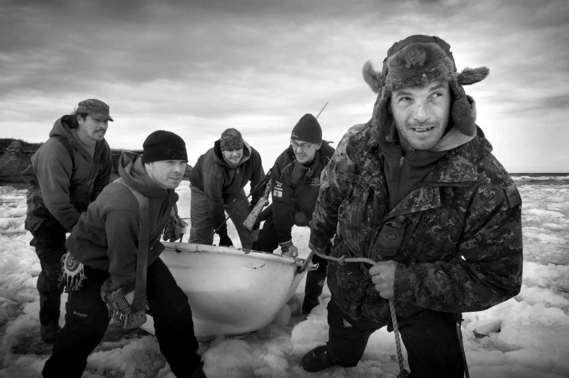 Seal Harvest Yoanis Menge 2012 (3)