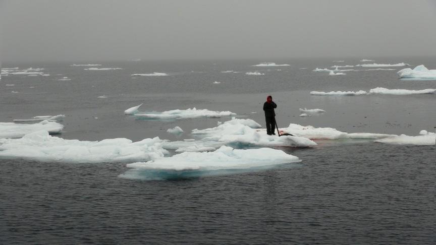 Seal Harvest (30)- Anne Troake Filmmaker - Canadian Seal Products