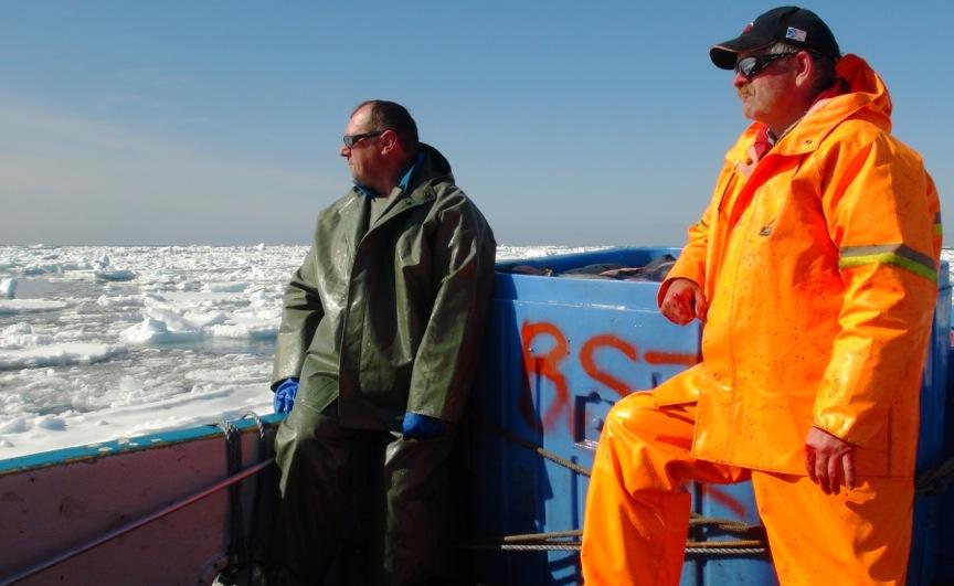 Seal Harvest (35)- Anne Troake Filmmaker - Canadian Seal Products