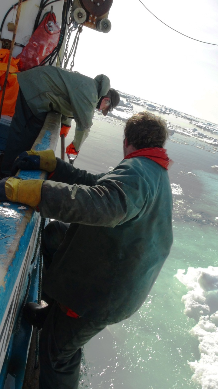Seal Harvest (44)- Anne Troake Filmmaker - Canadian Seal Products