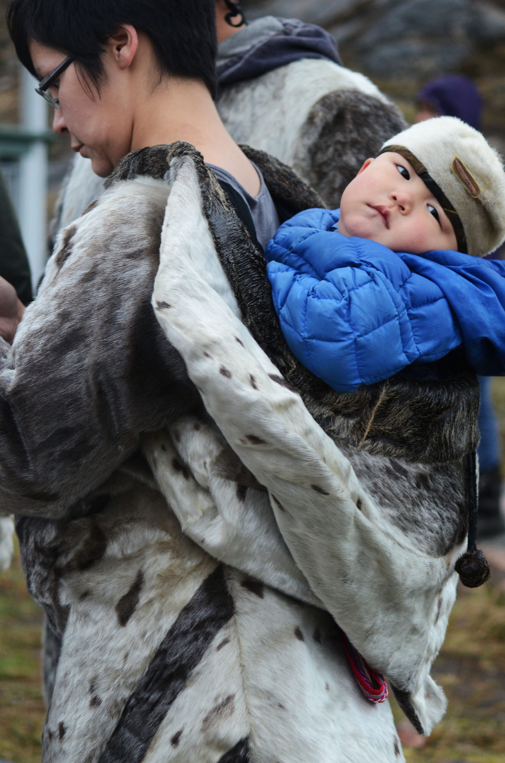 Seal & Indigenous Communities Pictures (10)