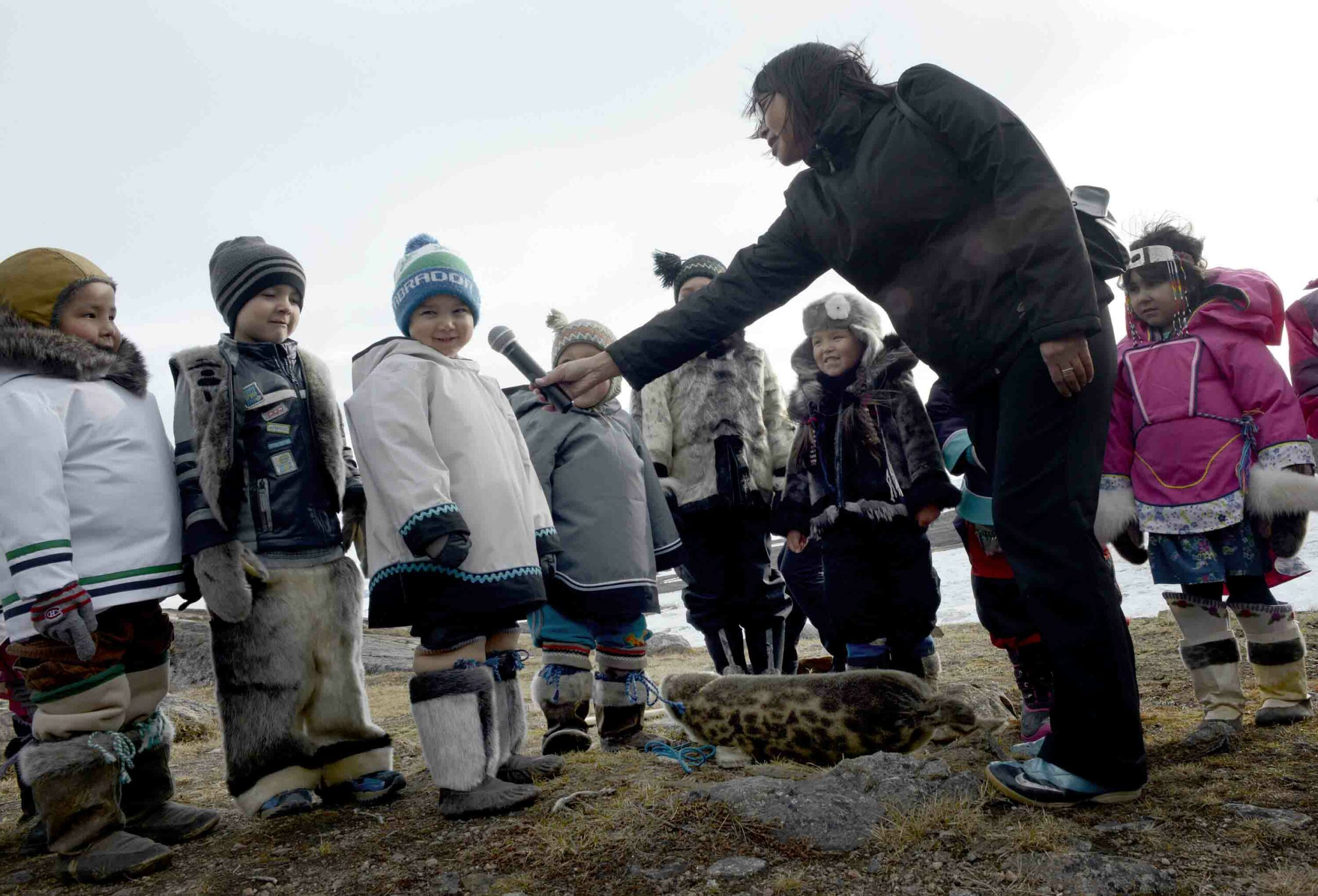 Seal & Indigenous Communities Pictures (4)
